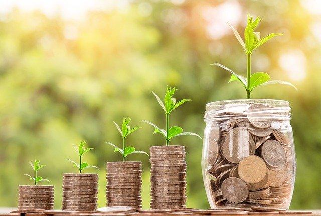 Het geld groeit me niet op de rug – Blog 24